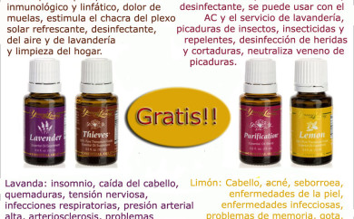 Aceites Esenciales Young Living February 2013