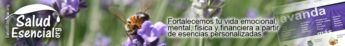 Aceites Esenciales Young Living Essential Oils